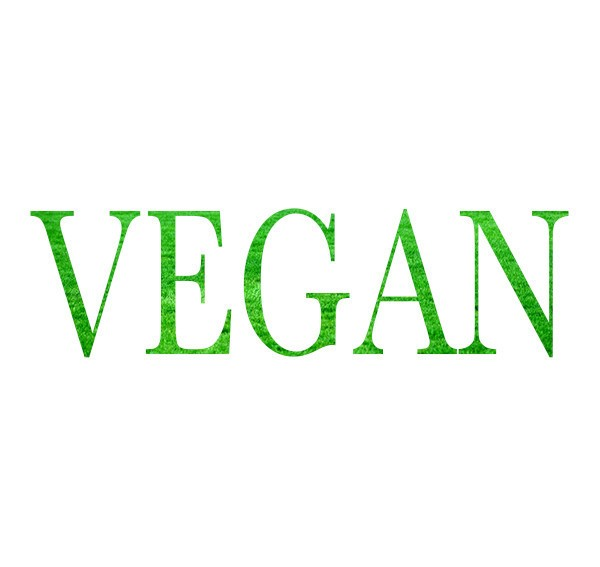 Picture of THE VEGAN OPTION