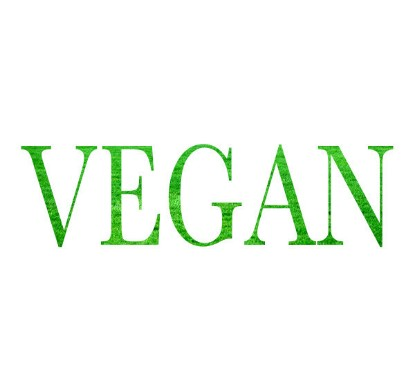 Image de THE VEGAN OPTION