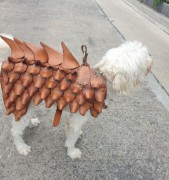 Picture of Vegtan Dog armour